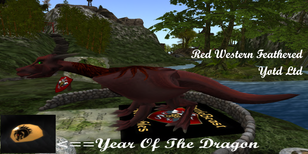 Year Of The Dragon Limited